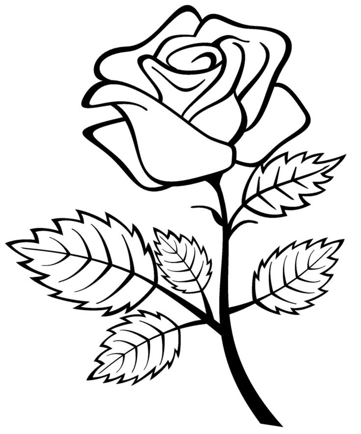 Free Printable Roses Coloring Pages For Kids Wallpaper