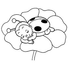 Ladybug Coloring Pages – Free Printables Wallpaper