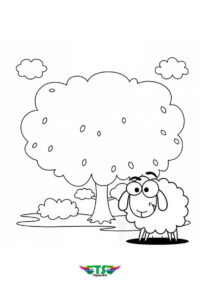 Best Animal Sheep Coloring Page