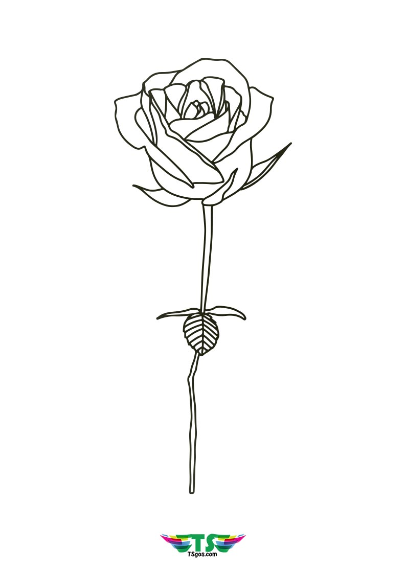 Easy Rose Flower Coloring Page For Kids